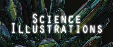 Science illustrations by Natalie McKean
