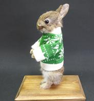 Adrian Johnstone, Professional Taxidermist since 1981. Supplier to private collectors, schools, museums, businesses and the entertainment world. Taxidermy is highly collectable. A taxidermy stuffed Baby Rabbit In A Jumper, in excellent condition.