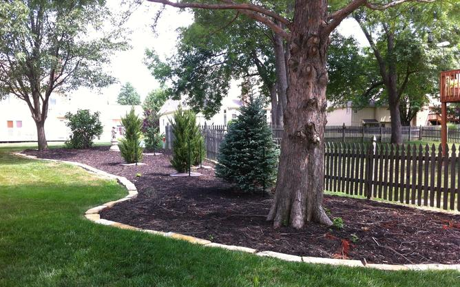 SEASONAL YARD CLEAN UP SERVICES