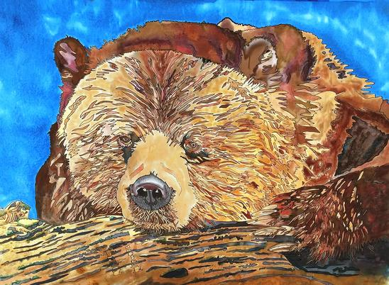 Tracy Harris Silk Artist, Grizzly Silk Painting, Gutta, water-base resist