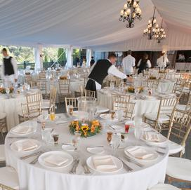 Serata Events, Indianapolis Event Planner, Wedding Planner
