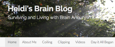 Heidi's Brain Blog: Surviving and Living with Brain Aneurysms