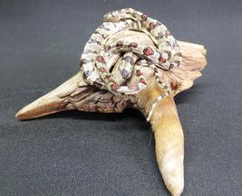 Adrian Johnstone, professional Taxidermist since 1981. Supplier to private collectors, schools, museums, businesses, and the entertainment world. Taxidermy is highly collectible. A taxidermy stuffed Snake (139), in excellent condition.