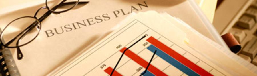 Custom written business plans