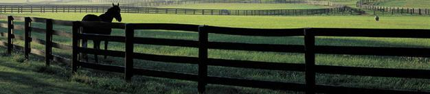 Agricultural Fencing. Horse Fencing. Farm Fencing. Chicago Fence Company. Chicago Suburbs