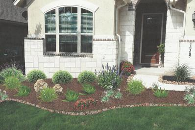 a mixed variety of plants and shrubs in a landscaping design in San Antonio by Wilson Landscape