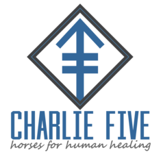 Charlie Five Donation Page
