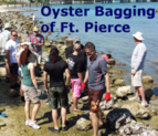 Oyster Bagging of Fort Pierce, Florida