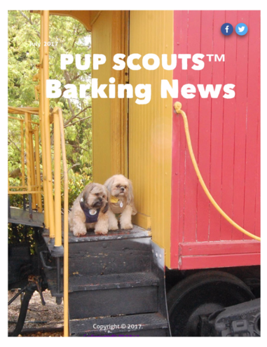PupScouts Barking News July 2017