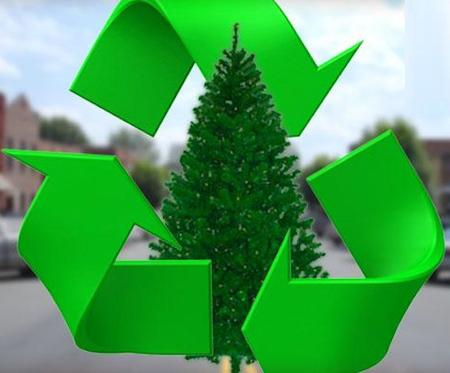 Christmas Tree Recycling Christmas Tree Removal Lincoln NE | LNK Junk Removal