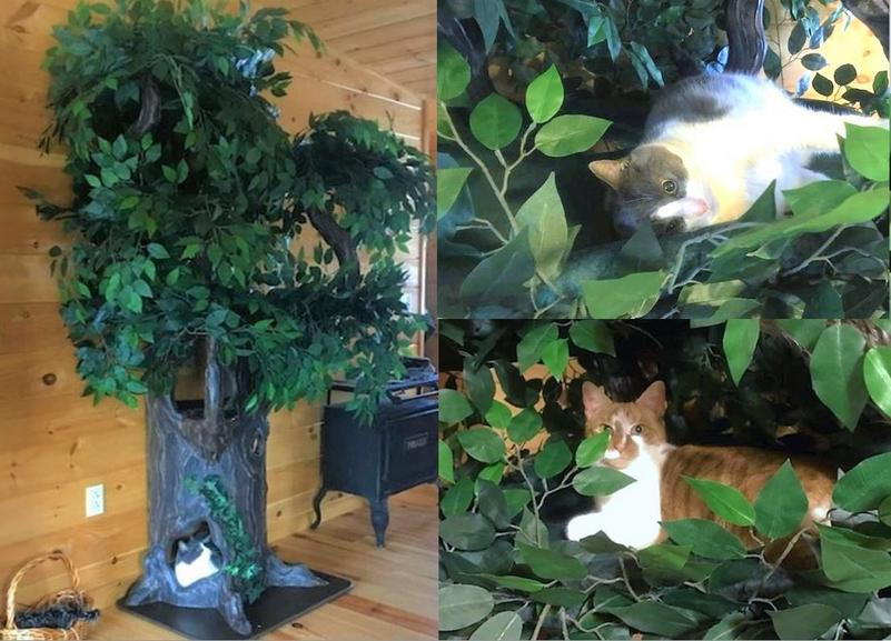 Real Looking Cat Trees