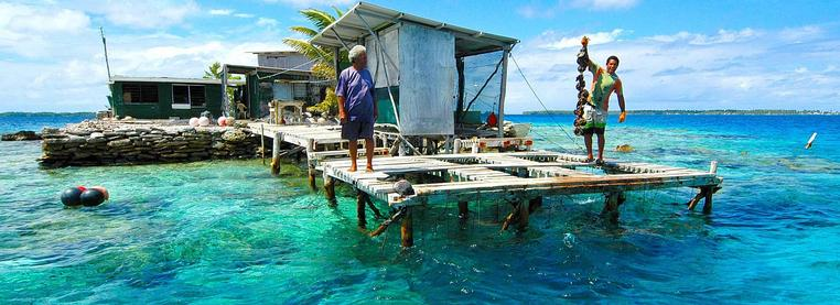 Cook Islands - pearl farmers