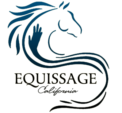 Equissage California | Equine Sports Massage Therapy Certification ...