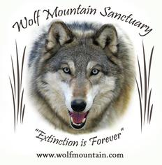 Wolf Mountain Sanctuary About
