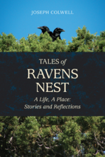 Tales of Ravens Nest by Joseph Colwell front book cover