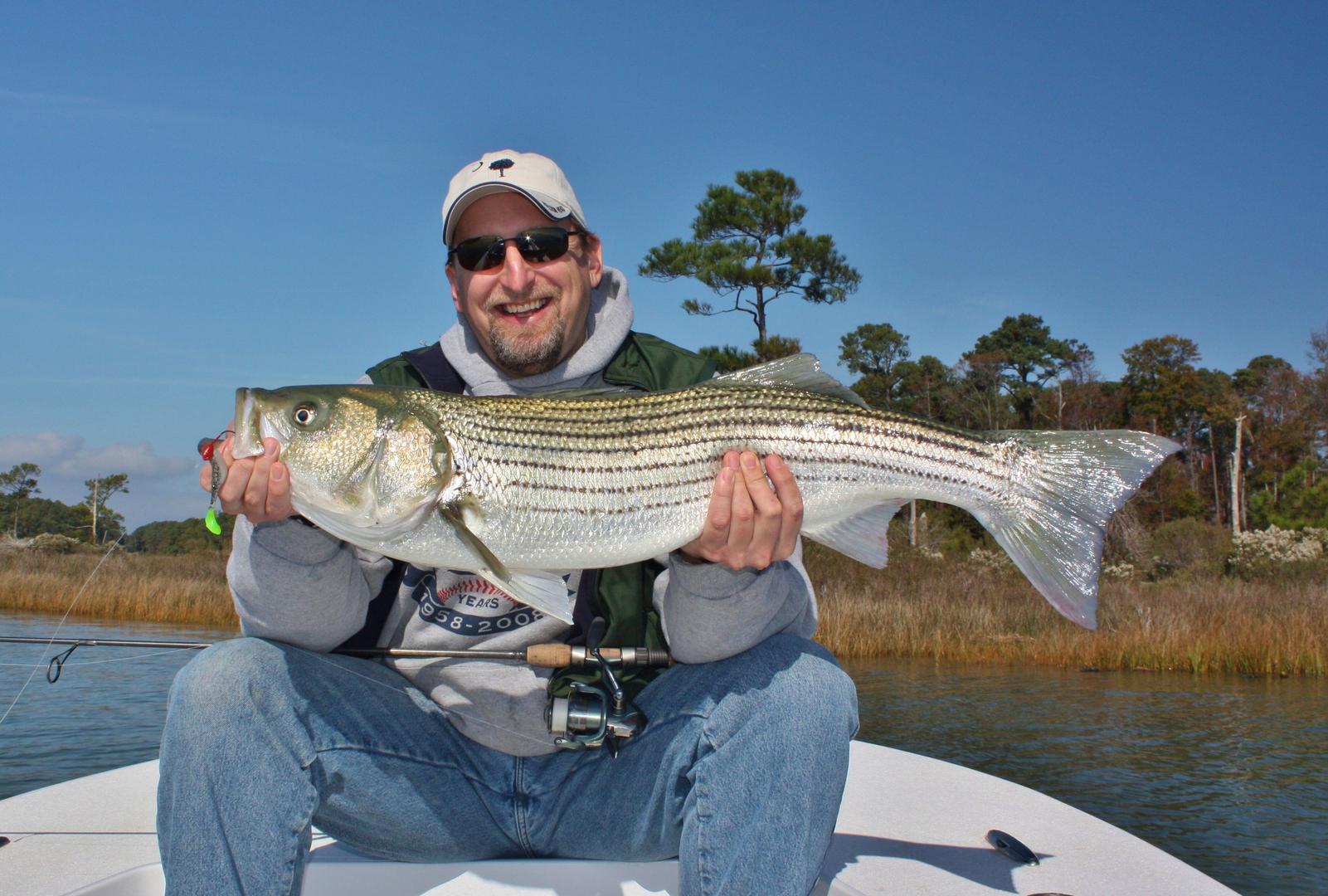 saltwater fly fishing & light tackle fishing: chesapeake bay of, Fishing Bait