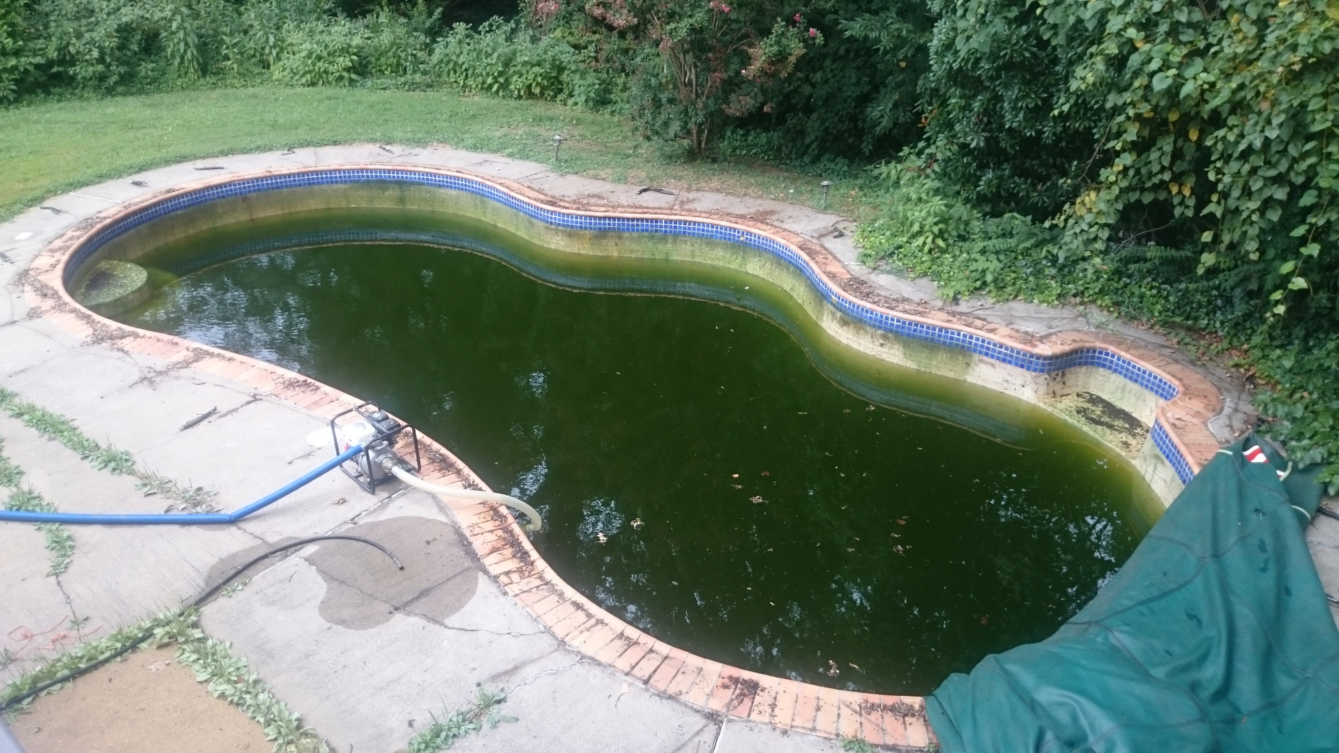 How much does it cost to remove my pool
