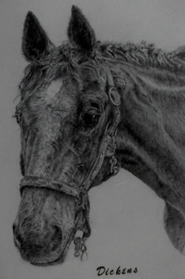 Pet Portrait Artist - Gray Pencil Art