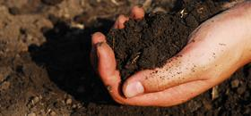 Soil Management Programs