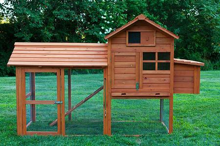 Chicken Coop with a run area. We can special order coops