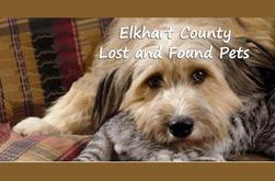 Elkhart County Lost & Found Pets