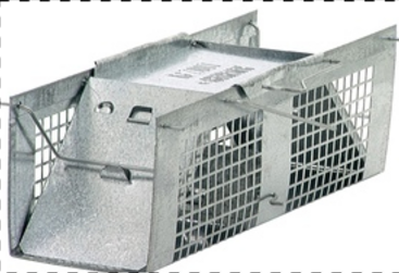 Live Animal Two-Door Rodent Cage Trap