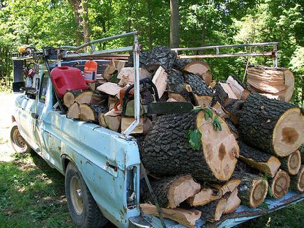 Excellent Log Removal Service in Omaha NE | Omaha Junk Disposal