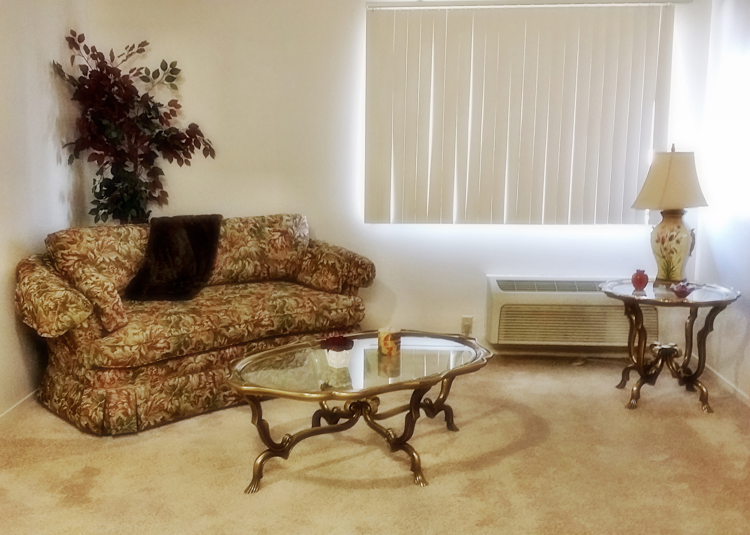 Well maintained apartments for comfortable living -  Park Kingsburg Senior Apartments Are Very Comfortable Quiet And Well Maintained Inside And Out I Ve Been Here 6 1 2 Years Happily