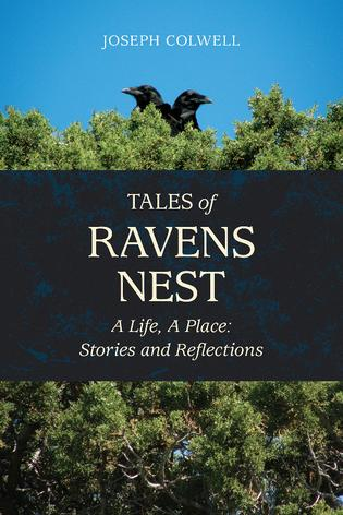 Cover photo for Joseph Colwell's Tales of Ravens Nest.