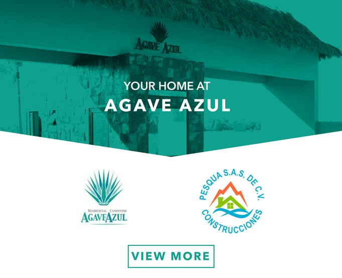 View More of Agave Azul