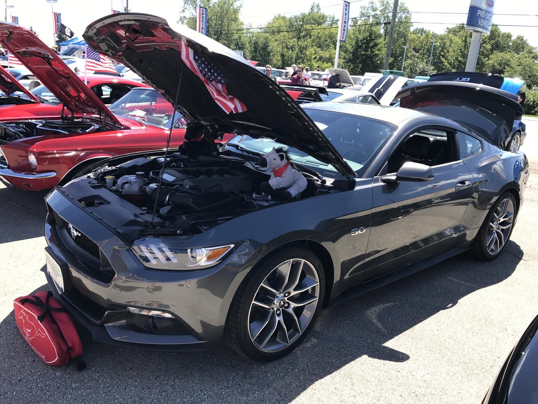 Mustang Club Of Indianapolis Car Show - Mustang car shows