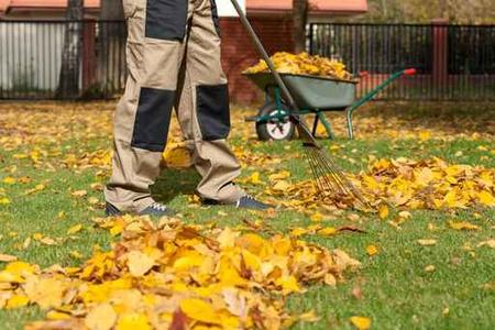 Professional Yard Waste Hauling Services| LNK Junk Removal