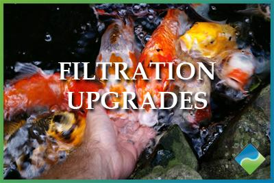 Aquatic Edge Pond & Landscape Solutions - Filtration Upgrades