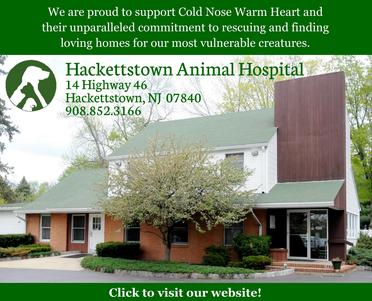 Hackettstown Animal Hospital