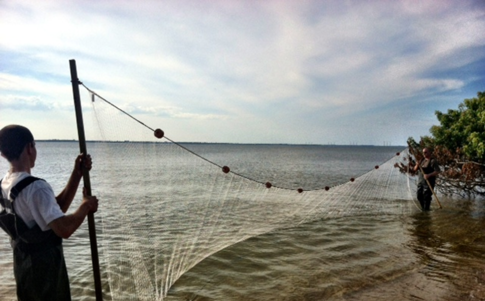 beach seine nets