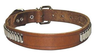 Oblong Studded Collar