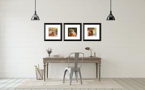 office with framed dog photos