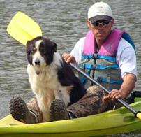Geese Police of Western Pennsylvania PA Man with boarder collie in kayak chasing canada geese