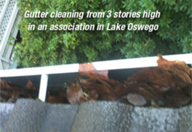 Gutter Cleaning,Gutter Cleaning Portland, Gutter Cleaning Lake Oswego