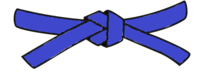 Requirements of the Blue Belt