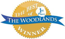 Best The Woodlands Painting