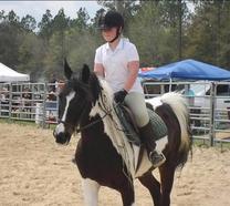 Meet Us Horse Lessons Training Boarding Fort Walton Beach