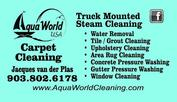 Carpet Cleaning Canton Texas
