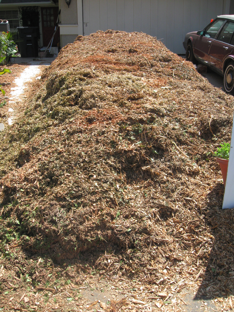 What kind of wood chips are best? - Free Woodchips