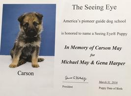 Carson, The Seeing Eye dog named in memory of Carson May