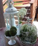 Whitewashed Lantern and Birdcage for Wedding Decor in Minnesota
