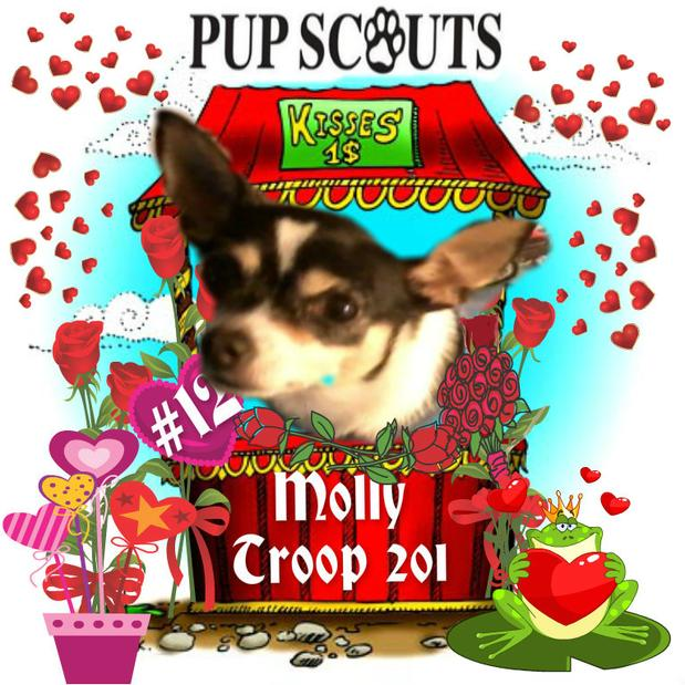 Pup Scout Molly Troop 201 smooch a pooch
