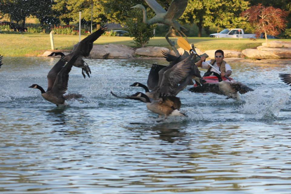 Geese Police of Western Pennsylvania PA Brandon Bowen Man in kayak chasing problem canada geese
