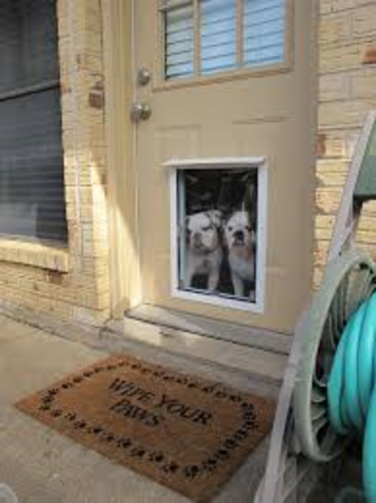 Pet Door Installation Services and Cost in Lincoln, NE | Lincoln Handyman Services