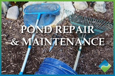 Aquatic Edge Pond & Landscape Solutions - Pond Repair & Maintenance